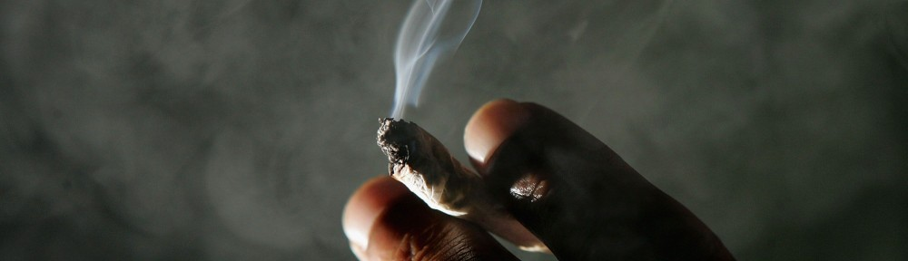 Cannabis Seeds bank